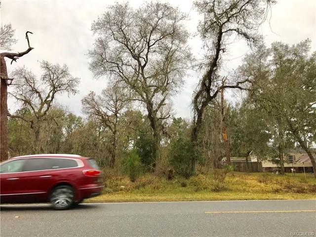 6688 W Homosassa Trail, Homosassa, FL 34448 (MLS #789451) :: Plantation Realty Inc.