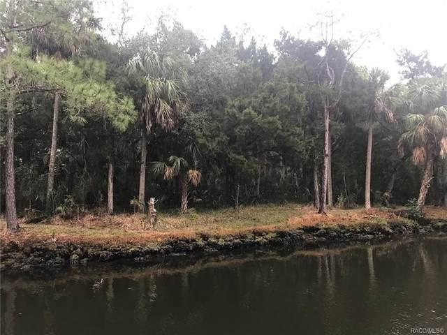 12388 W Restview Court, Homosassa, FL 34448 (MLS #789855) :: Plantation Realty Inc.