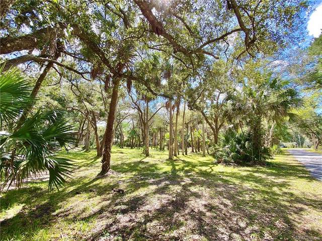 0 Lake Avenue, Yankeetown, FL 34498 (MLS #790663) :: Pristine Properties