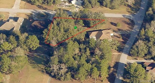 16 Knotwood Lane, Homosassa, FL 34446 (MLS #791444) :: Plantation Realty Inc.