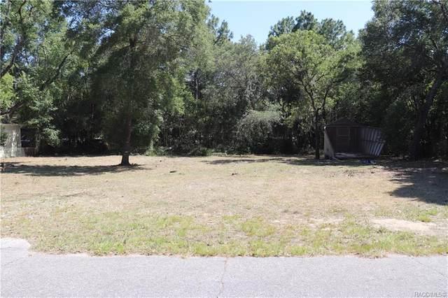 3584 W Riverview Lane, Dunnellon, FL 34433 (MLS #791945) :: Plantation Realty Inc.