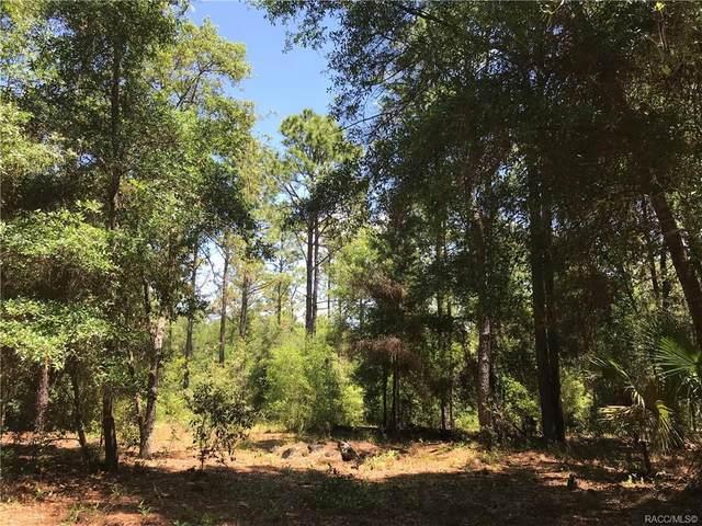 7321 W Citruswood Drive, Dunnellon, FL 34433 (MLS #792087) :: Plantation Realty Inc.