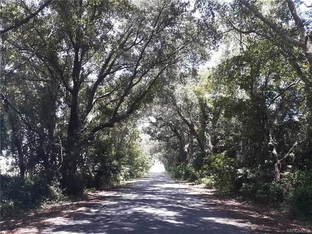 0 NW 6th Street, Dunnellon, FL 34431 (MLS #792128) :: Plantation Realty Inc.