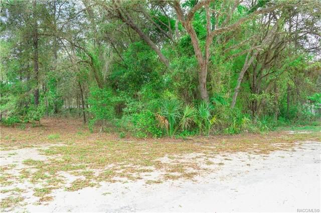 3459 W Alfalfa Lane, Dunnellon, FL 34433 (MLS #792428) :: Plantation Realty Inc.