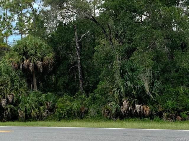 10023 W Dunnellon Road, Crystal River, FL 34428 (MLS #793437) :: Plantation Realty Inc.
