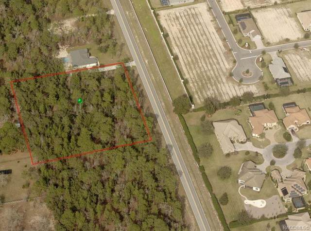 1726 N Ottawa Avenue, Lecanto, FL 34461 (MLS #795169) :: Plantation Realty Inc.