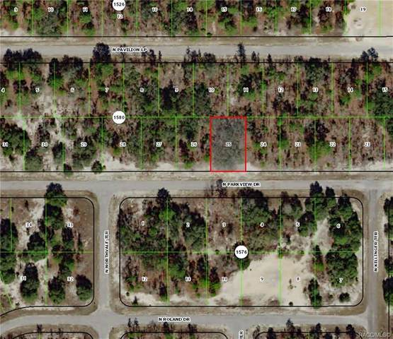 2917 W Redgate Drive, Citrus Springs, FL 34433 (MLS #796014) :: Plantation Realty Inc.