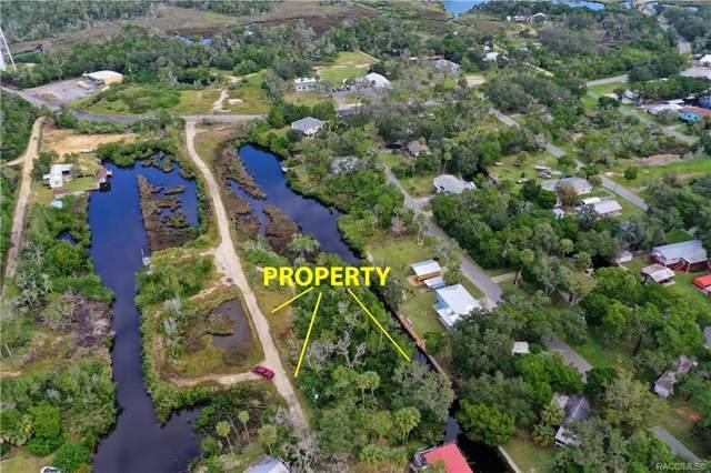 2185 S Appletree Point, Crystal River, FL 34429 (MLS #796111) :: Plantation Realty Inc.