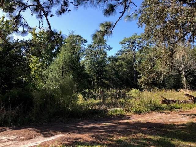 2892 S Euclid Terrace, Homosassa, FL 34448 (MLS #796440) :: Plantation Realty Inc.
