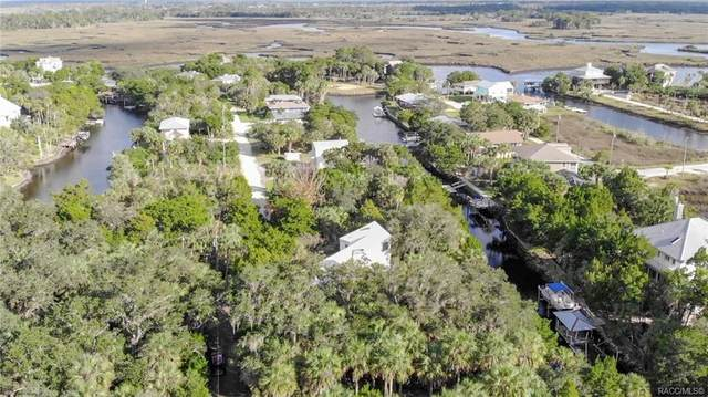 12164 W Gulf Breeze Court, Crystal River, FL 34429 (MLS #796605) :: Plantation Realty Inc.