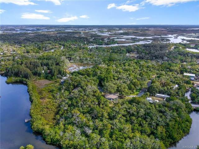 1358 S Ozello Trail, Crystal River, FL 34429 (MLS #797517) :: Plantation Realty Inc.