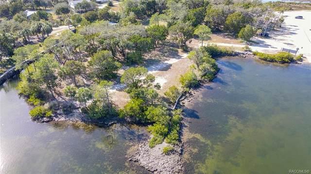 360 N Mullet Point, Crystal River, FL 34429 (MLS #797827) :: Plantation Realty Inc.