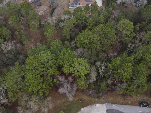 1911 W Pickett Court, Hernando, FL 34442 (MLS #798200) :: Plantation Realty Inc.