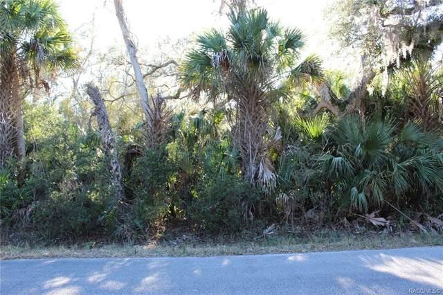 8102 N Flame Vine Way, Crystal River, FL 34428 (MLS #798313) :: Plantation Realty Inc.