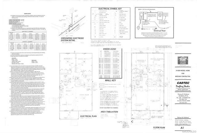 0 SE 196th Lane, Dunnellon, FL 34431 (MLS #798806) :: Plantation Realty Inc.