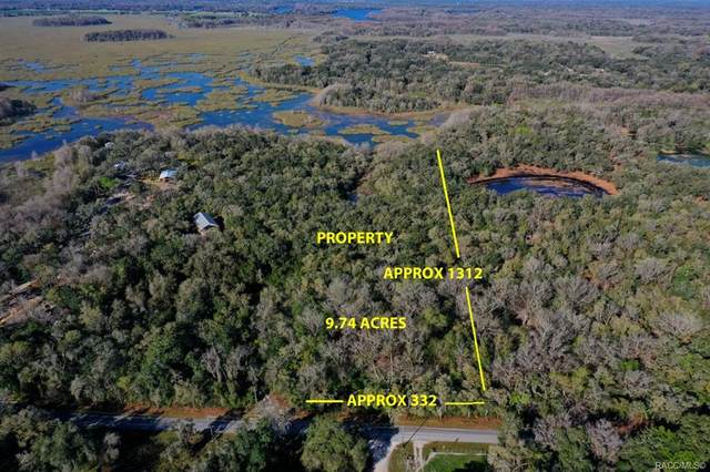 5972 S Withlapopka Drive, Floral City, FL 34436 (MLS #798872) :: Plantation Realty Inc.