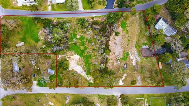 2155 S Gulfwater Point, Crystal River, FL 34429 (MLS #799105) :: Plantation Realty Inc.