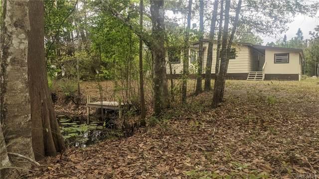 7785 W Twin Canal Lane, Homosassa, FL 34448 (MLS #799700) :: Plantation Realty Inc.