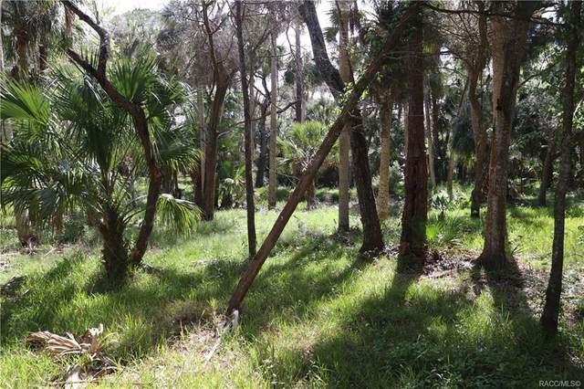 0 Lake Street, Yankeetown, FL 34498 (MLS #799735) :: Dalton Wade Real Estate Group