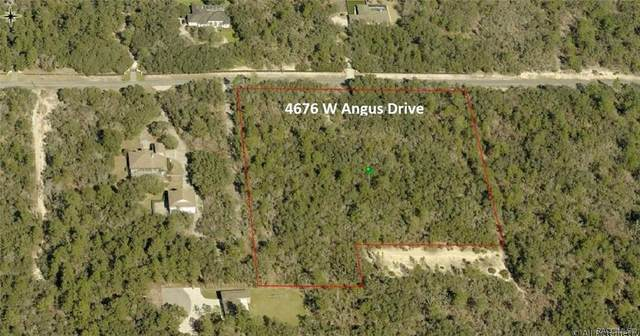 4676 W Angus Drive, Beverly Hills, FL 34465 (MLS #799977) :: Plantation Realty Inc.