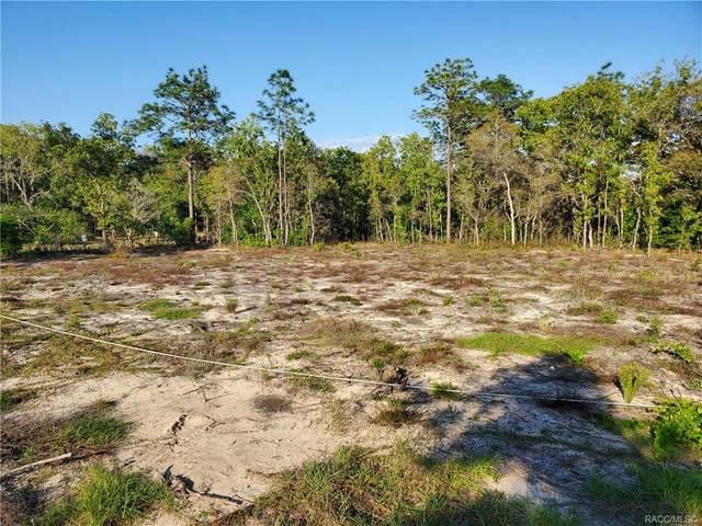 1887 N Watkins Point, Inverness, FL 34453 (MLS #800123) :: Plantation Realty Inc.