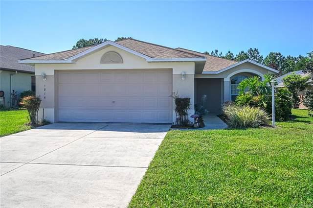 1815 W Shanelle Path, Lecanto, FL 34461 (MLS #800141) :: Plantation Realty Inc.