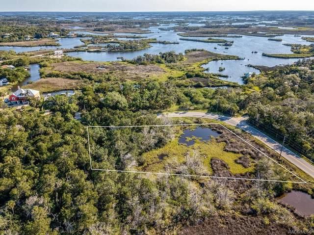 14412 W Ozello Trail, Crystal River, FL 34429 (MLS #800668) :: Plantation Realty Inc.