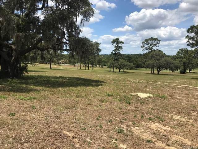 3373 W Shadow Creek Loop, Lecanto, FL 34461 (MLS #800817) :: Plantation Realty Inc.