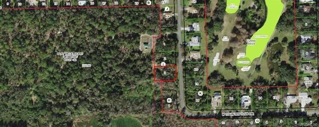 91 N Country Club Drive, Crystal River, FL 34429 (MLS #800973) :: Plantation Realty Inc.
