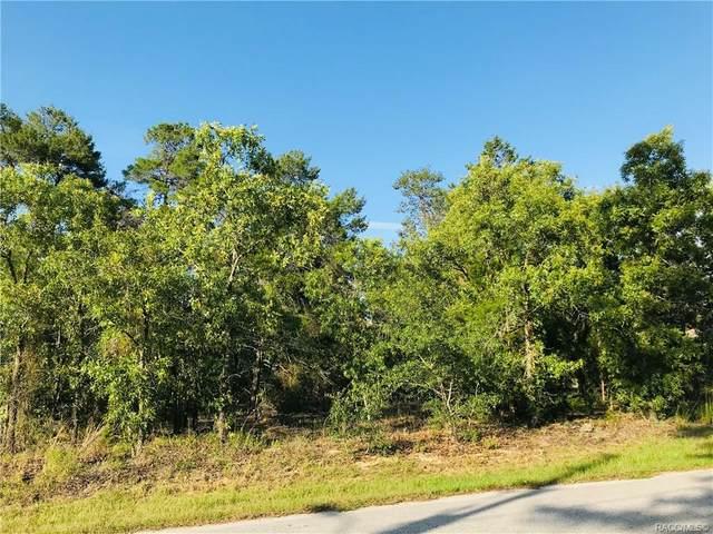 28 Lone Pine Street, Homosassa, FL 34446 (MLS #801336) :: Plantation Realty Inc.