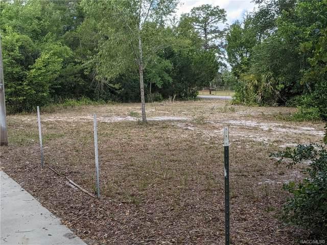 3940 E Camp Izzard Place, Dunnellon, FL 34434 (MLS #801546) :: Plantation Realty Inc.