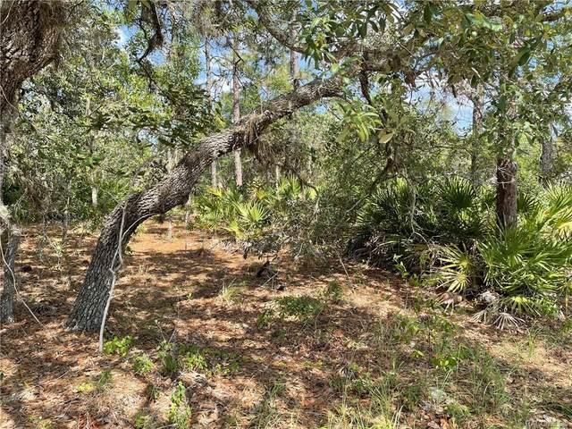 4467 S Alita Terrace, Homosassa, FL 34446 (MLS #801978) :: Plantation Realty Inc.