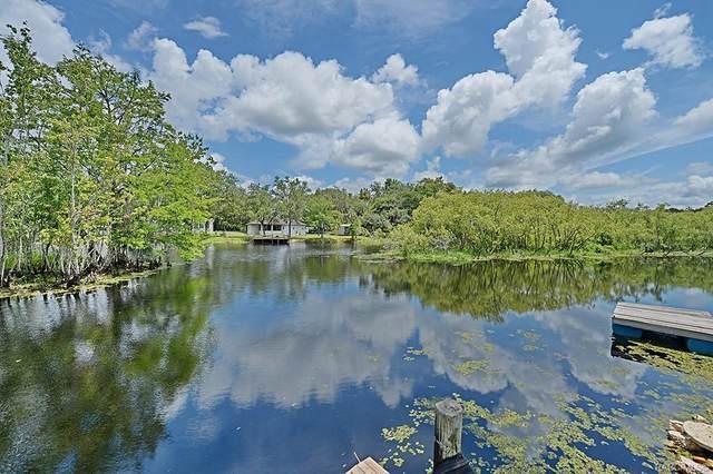 11313 E Salmon Drive, Floral City, FL 34436 (MLS #802001) :: Plantation Realty Inc.