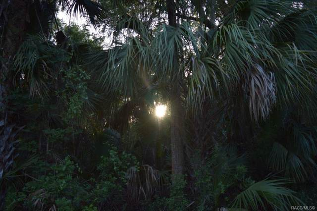 11332 W Sleeping Bear Lane, Crystal River, FL 34428 (MLS #802357) :: Plantation Realty Inc.