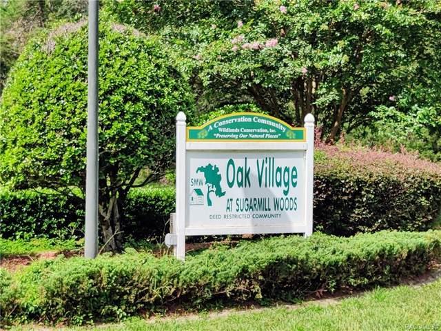 5770 W Oak Park Boulevard, Homosassa, FL 34446 (MLS #803320) :: Plantation Realty Inc.