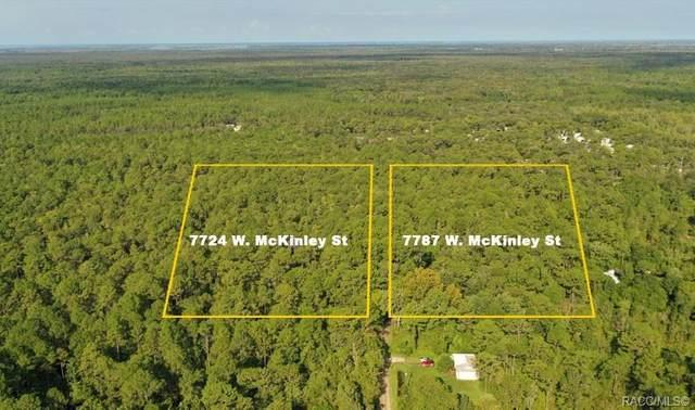 7724 W Mckinley Street, Homosassa, FL 34448 (MLS #805425) :: Plantation Realty Inc.