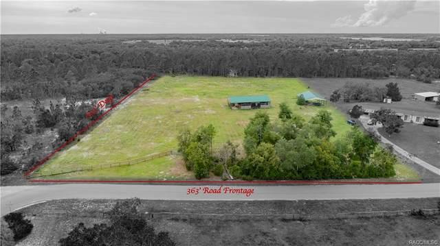 11158 N Springvale Terrace, Dunnellon, FL 34433 (MLS #805744) :: Plantation Realty Inc.