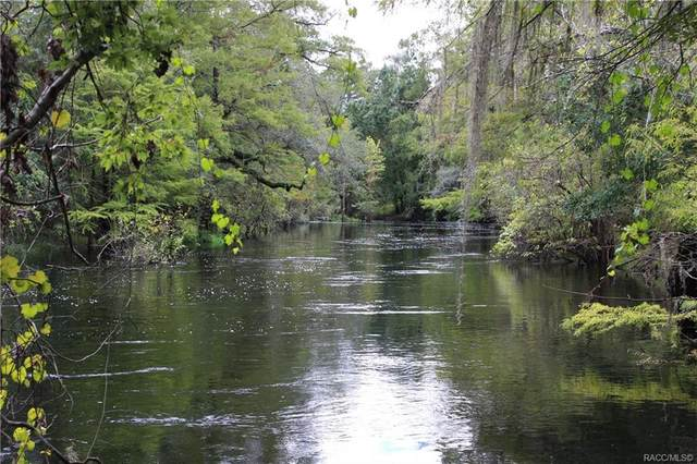 39846 Sr 575, Dade City, FL 33523 (MLS #805825) :: Plantation Realty Inc.