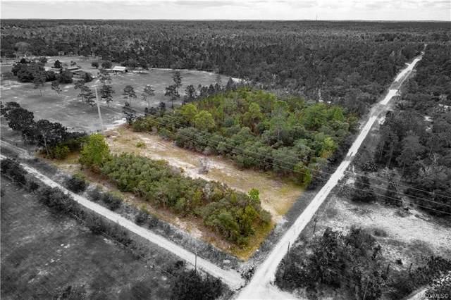 5842 W Sophia Lane, Dunnellon, FL 34433 (MLS #806425) :: Plantation Realty Inc.
