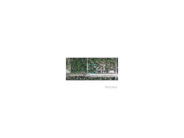 1871 E Norvell Bryant Highway, Hernando, FL 34442 (MLS #322155) :: Plantation Realty Inc.