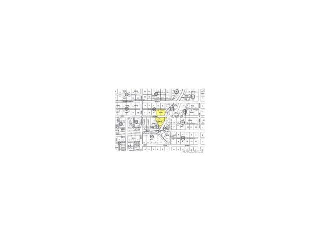 10515 W Yulee Drive, Homosassa, FL 34448 (MLS #324818) :: Plantation Realty Inc.