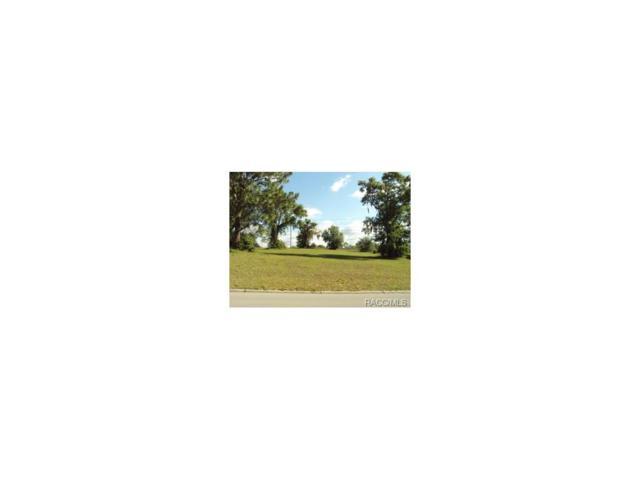 1711 N Wembley Drive, Crystal River, FL 34429 (MLS #356136) :: Plantation Realty Inc.