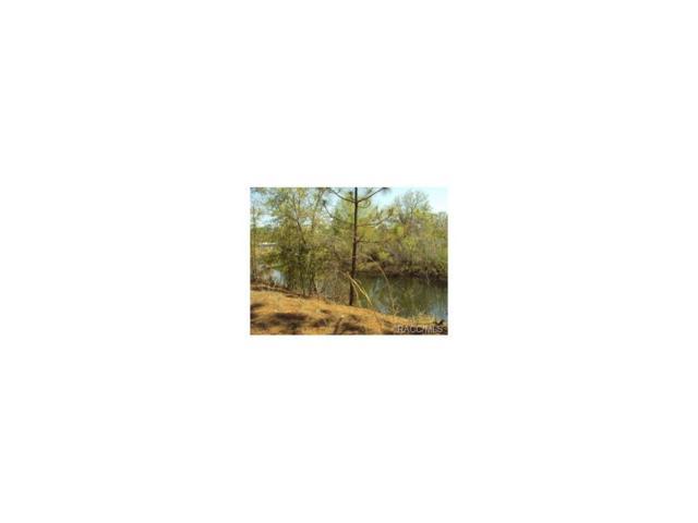 10301 W Pamondeho Circle, Crystal River, FL 34428 (MLS #701977) :: Plantation Realty Inc.