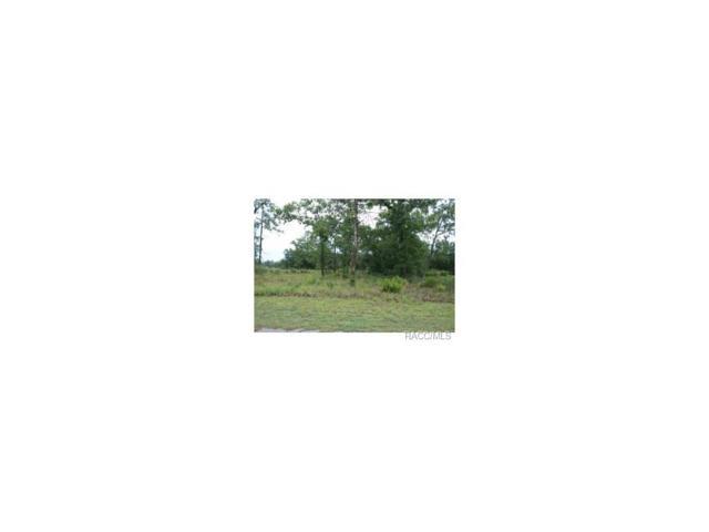 5299 Heloise Terrace, Homosassa, FL 34446 (MLS #704720) :: Plantation Realty Inc.
