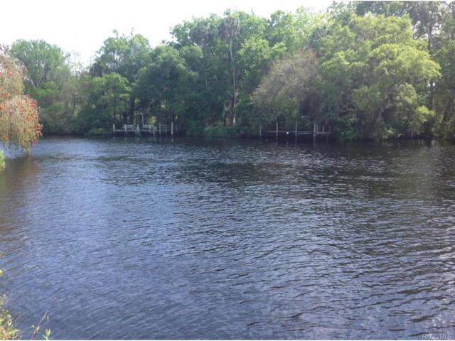 0 Riverside Drive, Yankeetown, FL 34498 (MLS #717489) :: Plantation Realty Inc.