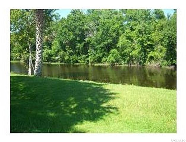 163 N Golf Harbor Path, Inverness, FL 34450 (MLS #720127) :: Plantation Realty Inc.