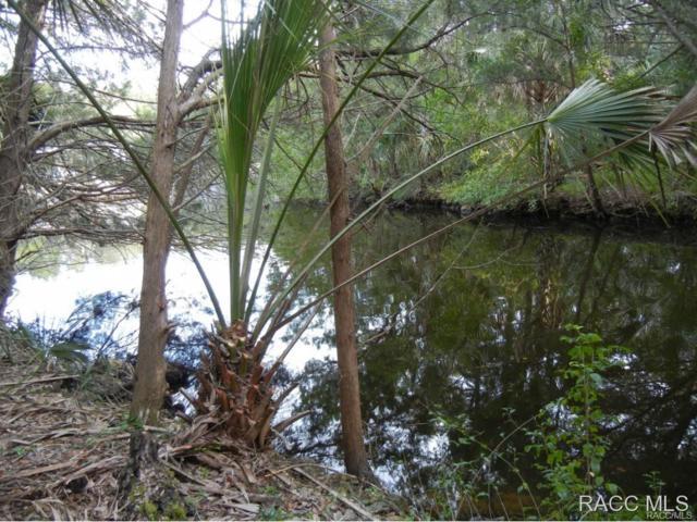 6214 S Hancock Road, Homosassa, FL 34448 (MLS #723788) :: Plantation Realty Inc.