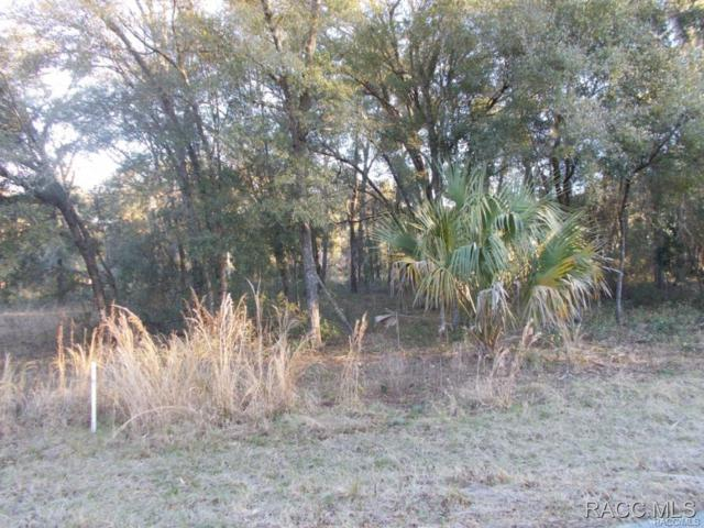 3219 E Marcia Street, Inverness, FL 34442 (MLS #724329) :: Plantation Realty Inc.