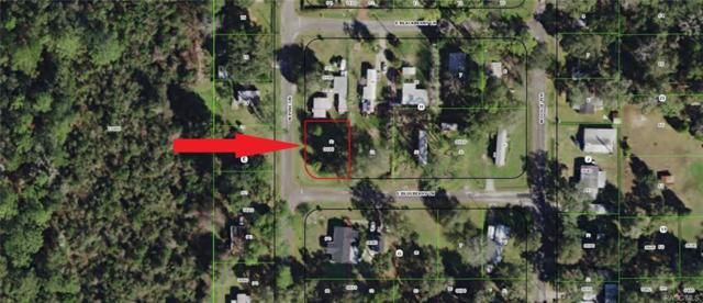4511 N Pine(Impact Fee Paid), Hernando, FL 34433 (MLS #724815) :: Plantation Realty Inc.