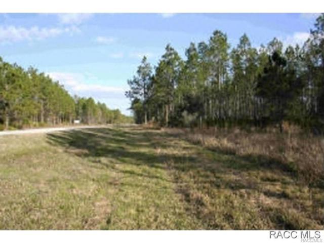 0 Cr 326 Tract 2, Gulf Hammock, FL 32639 (MLS #726023) :: Plantation Realty Inc.